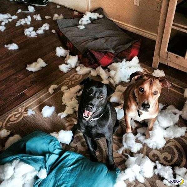 Разрушения и хаос