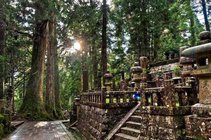 Самое большое кладбище Японии
