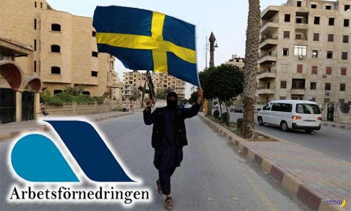 Шведская доброта