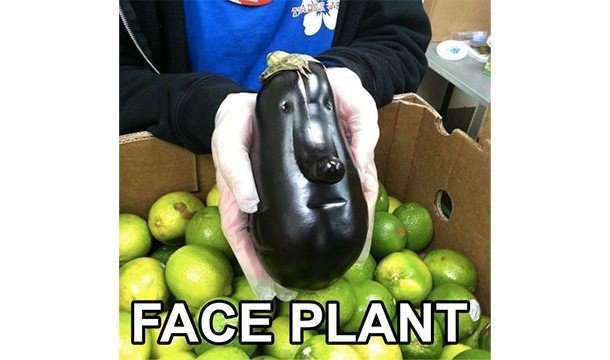 Сладкие факты про фрукты, которые вы не знали