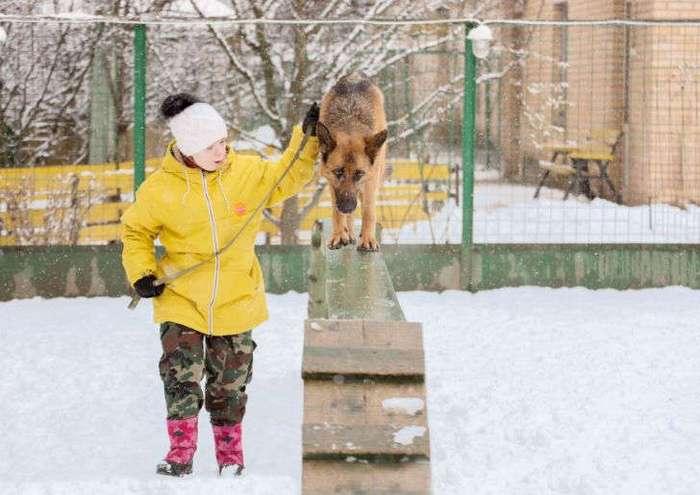 «Солнце для лучшего друга»: как собаки и молодые люди с синдромом Дауна помогают друг другу