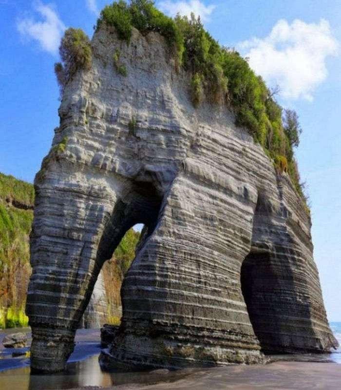 Странные и необычные достопримечательности в Новой Зеландии