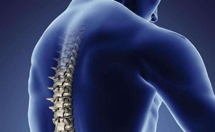 Все, что нужно знать о болях спины