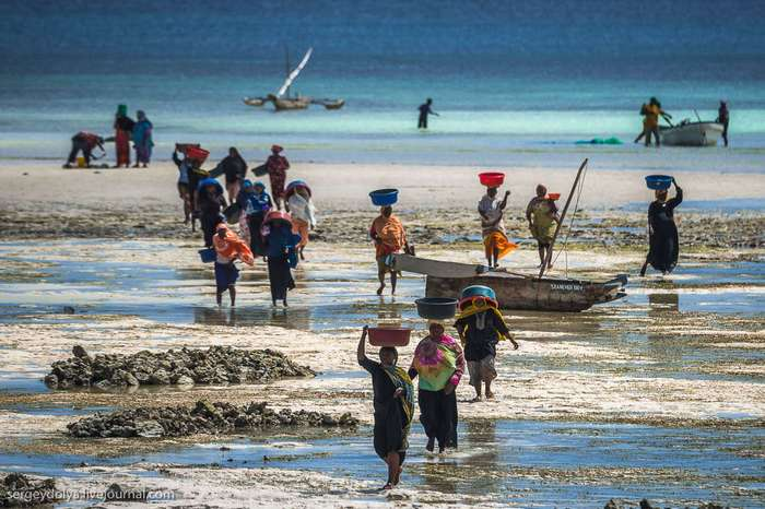 Занзибарские рыбаки