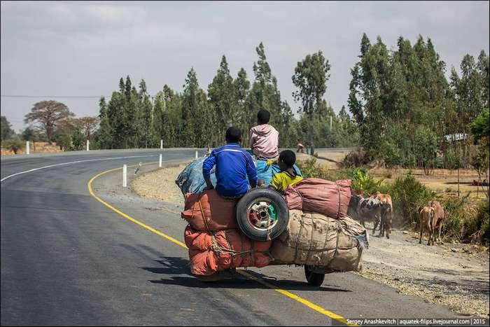 Жизнь на эфиопских дорогах