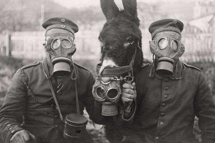 Подборка редких фотографий со всего мира