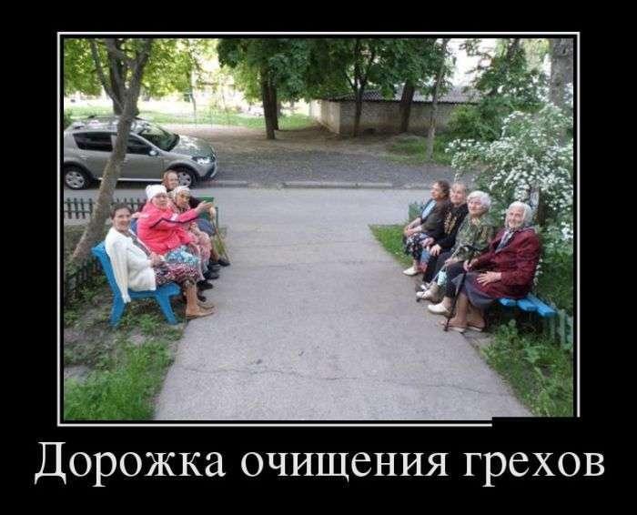 Демотиваторы №1507 (30 фото)