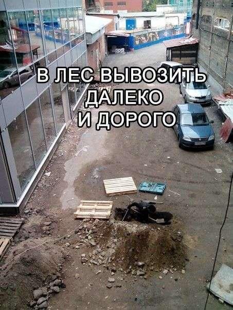 Подборка черного юмора (22 фото)