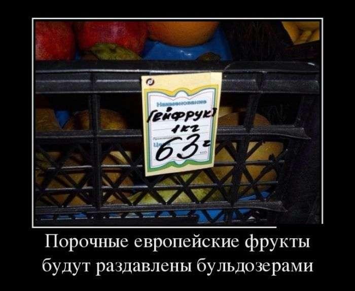 Демотиваторы №1506 (30 фото)