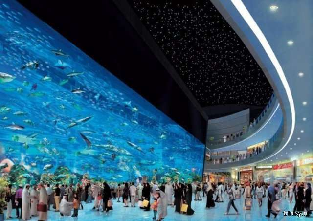 Сумасшедшие фотографии из Дубая (30 фото)