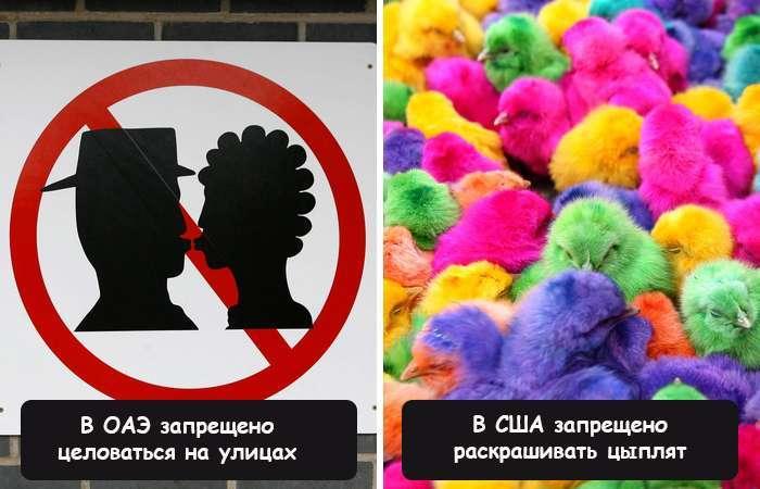 Самые глупые, забавные и откровенно нелепые законы, которые действуют в разных странах (часть 2)