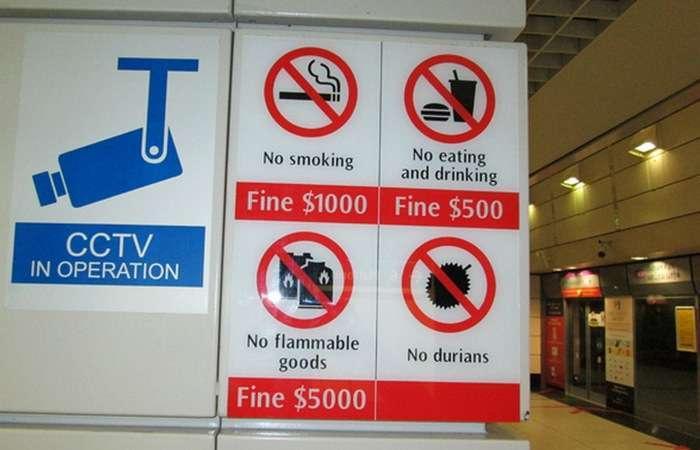 Самые глупые, забавные и откровенно нелепые законы, которые действуют в разных странах
