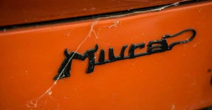 Итальянский спорткар Lamborghini простоял 28 лет в гараже (28 фото)