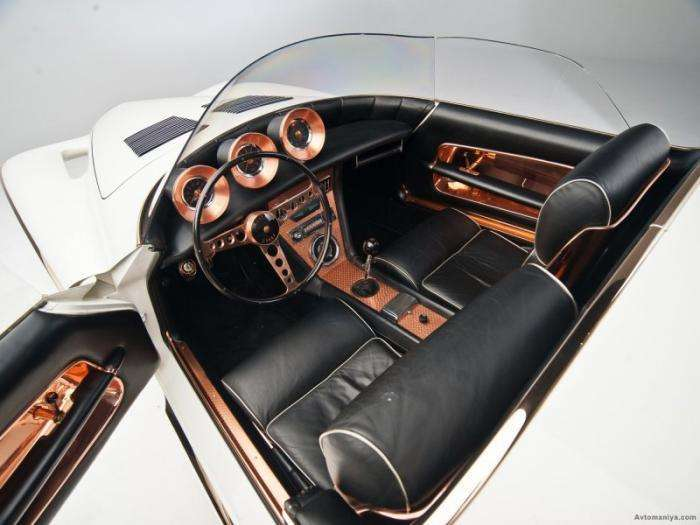 Уникальный ретро-родстер Mercer-Cobra 1965 (12 фото)