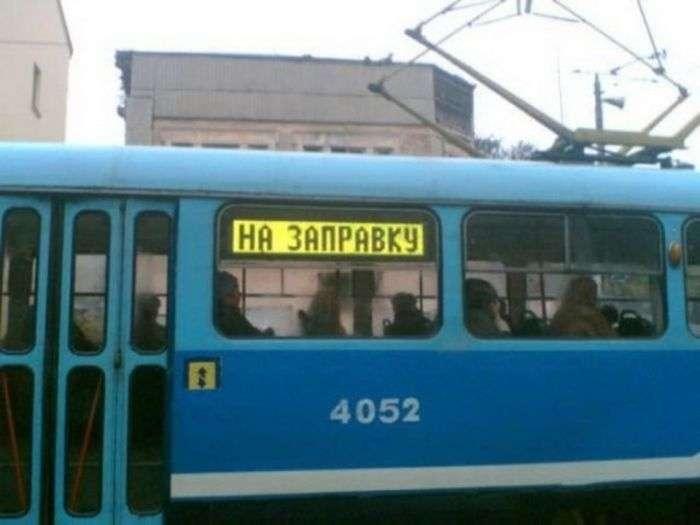 Смешные надписи на транспорте (22 фото)
