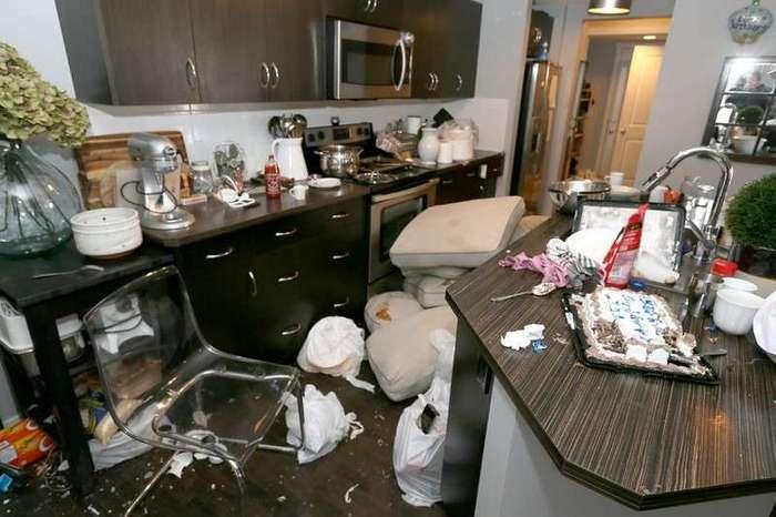 Пара сдала свой дом на Airbnb, а вернулась в разгромленное жилище