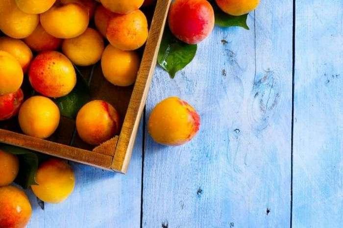 15 продуктов, которыми можно перекусить вечером и не навредить фигуре (8 фото)