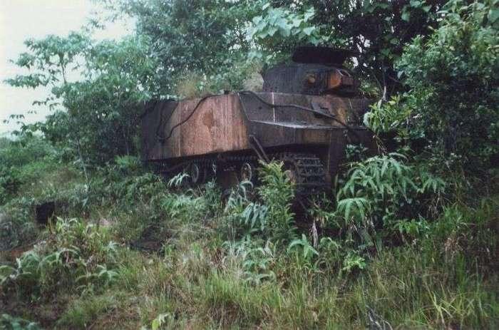 Военная техника, проглоченная дикой природой (16 фото)