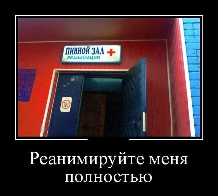 Демотиваторы №1356 (30 фото)