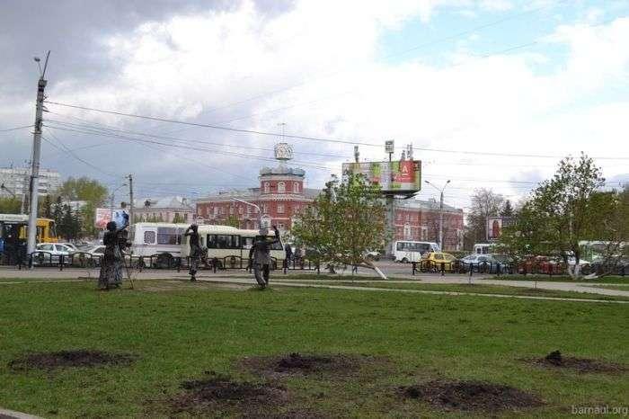 В Барнауле похитили молодые ели, высаженные в ходе акции «Лес Победы» (4 фото)