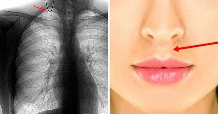 10 странных и неожиданных фактов об органах человеческого тела