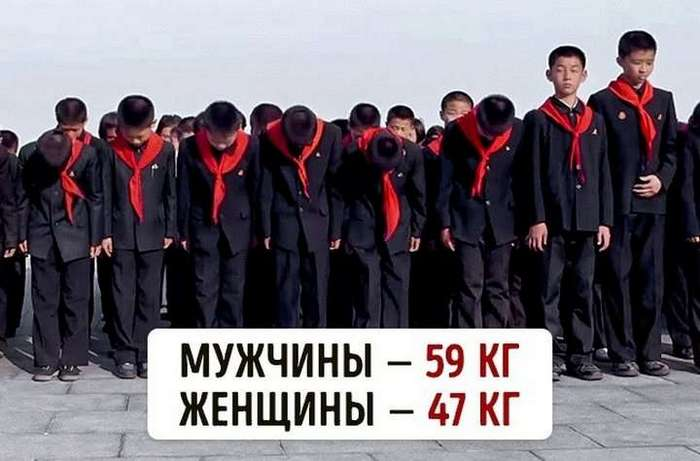Сколько весят люди в разных странах