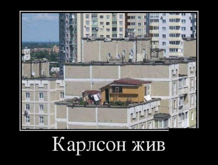 Демотиваторы №1339 (30 фото)