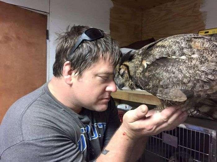 Трогательная встреча совы с ее спасителем (4 фото)