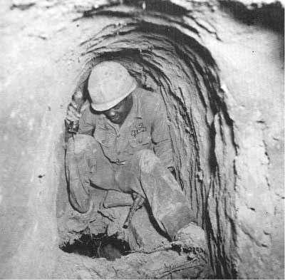 Туннельные крысы (18 фото)