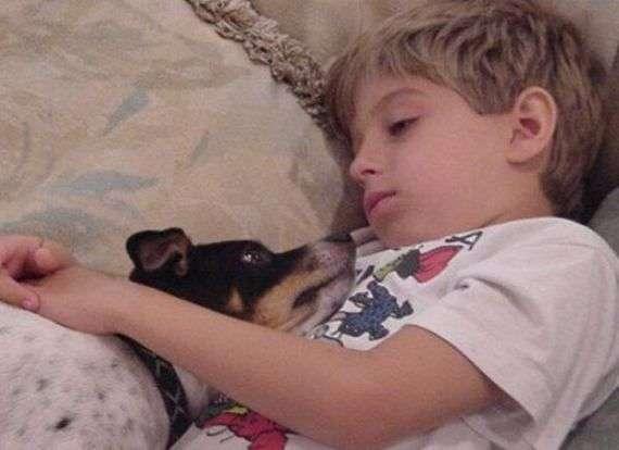Дети и животные (61 фото)