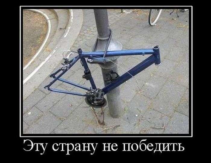 Демотиваторы №1494 (30 фото)