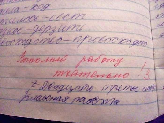 «Неси дневник!»: 17 уморительных учительских замечаний из школьных тетрадей и дневников