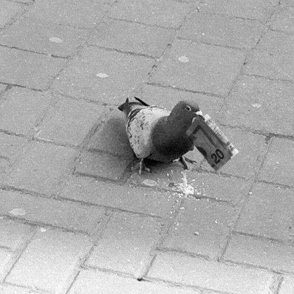 Подборка прикольных фото №1496 (111 фото)