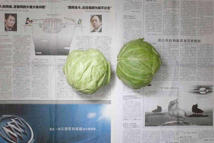 Еда для бедного китайца (12 фото)