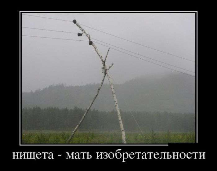 Демотиваторы №1426 (30 фото)