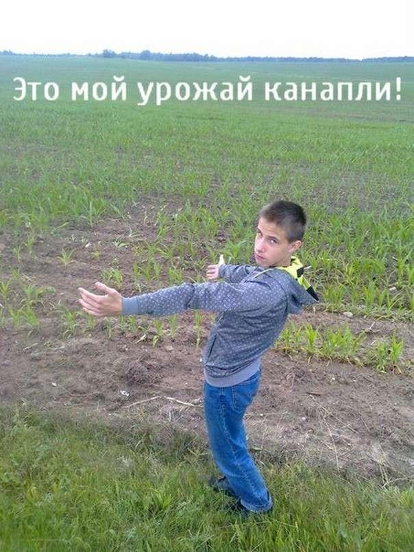 Чудики из социальных сетей 12.04.16 (32 фото)