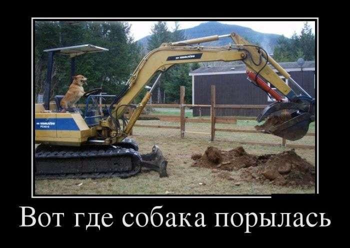 Демотиваторы №1361 (30 фото)