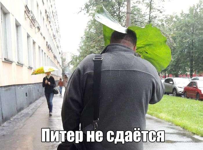 Подборка прикольных фото №1410 (110 фото)