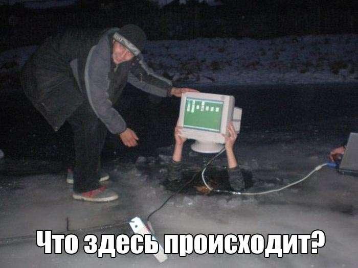Подборка прикольных фото №1372 (111 фото)