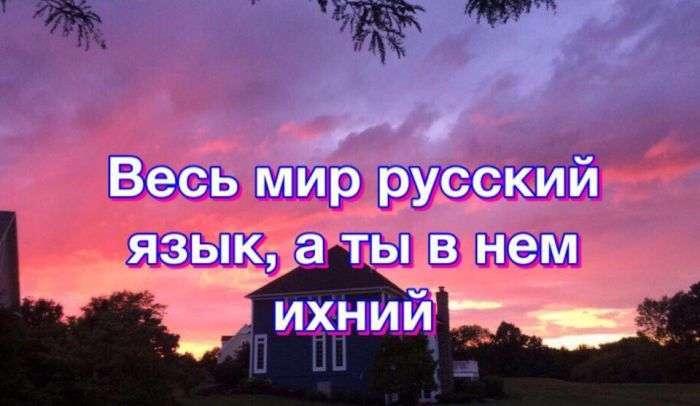Подборка прикольных фото №1475 (108 фото)