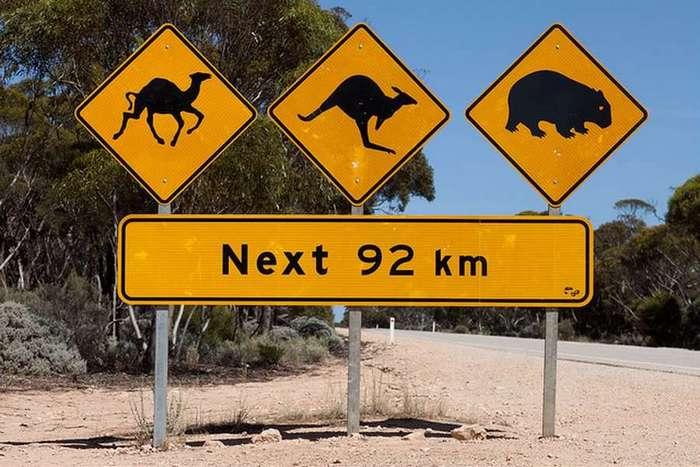 Дорожные знаки из другого измерения