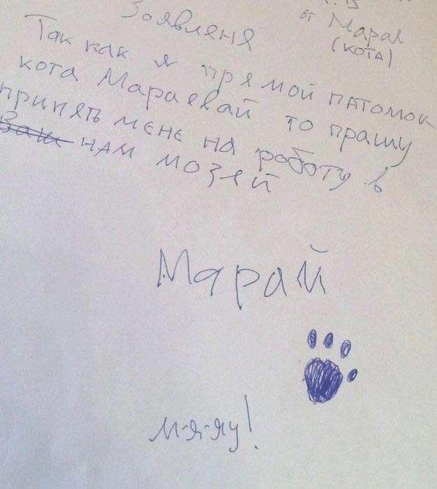 Шутка российского музея закончилась тем, что ему пришлось взять на работу кота (7 фото)