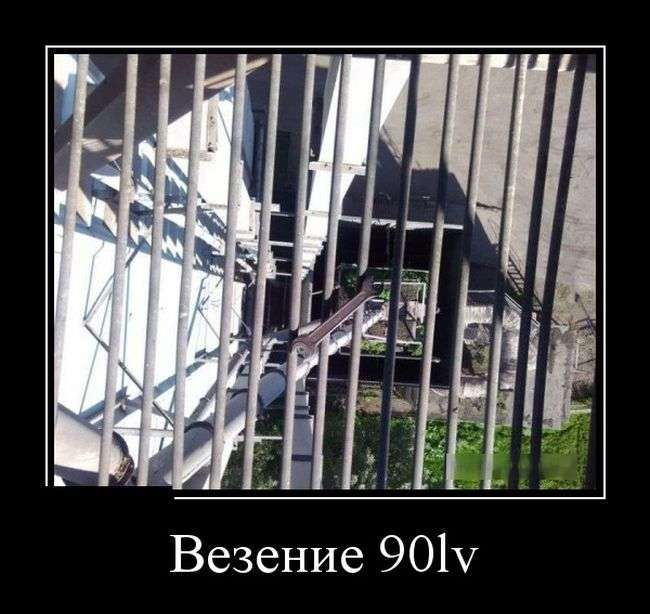 Демотиваторы №1407 (30 фото)