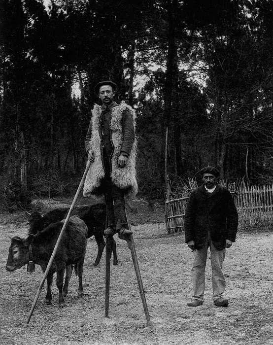 Высоко сижу – далеко гляжу: почему раньше некоторые перемещались только на ходулях