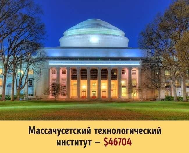 Сколько стоит образование в разных университетах мира (16 фото)