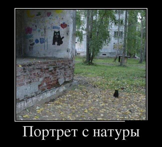 Демотиваторы №1364 (30 фото)