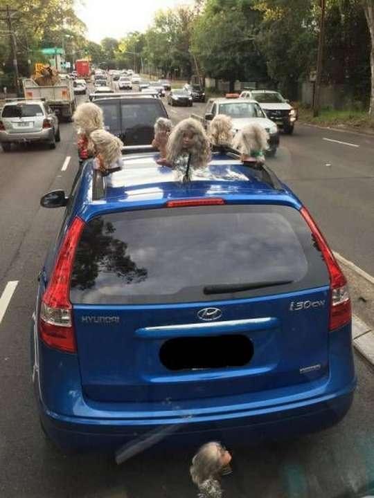Автомобильно-дорожные приколы