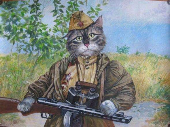 История кота-зенитчика (кот Рыжик)
