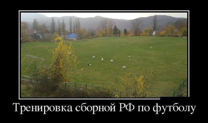 Демотиваторы №1498 (30 фото)