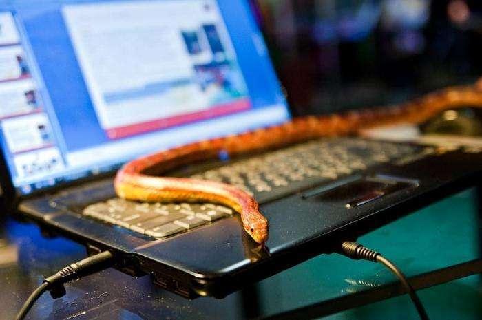 """Офис компании """"Технология Игр"""" (10 фото)"""